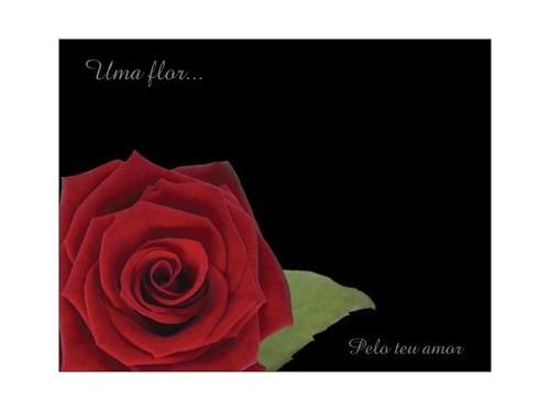 Postal Rosa