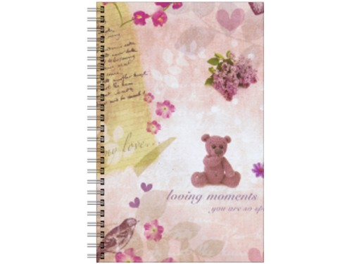 Caderno Classical